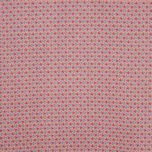 tetra met kleine tekening , achtergrond in roze.