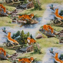 Katoentje met vossen