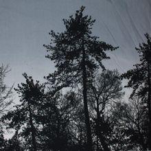 French terry paneel grijs met bomen