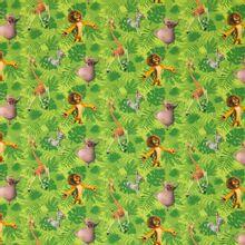 Groene tricot Madagascar