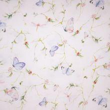 witte Tetra met Vlinders