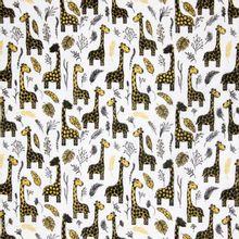 Witte Tetra met Giraffen