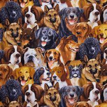 Katoen met Honden
