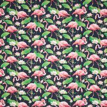 Zwarte tricot met flamingo's