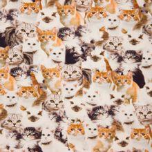 Katoentricot met katten