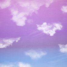 Lichte Wolkenlucht Katoen Tricot