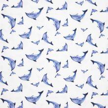 Witte Tetra met Dolfijnen