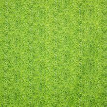 Groene Katoen met Krullende Bladeren Patroon
