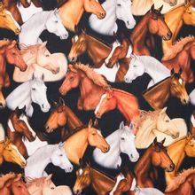 Zwarte katoen met paarden