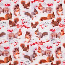 Witte tricot met digitale fotoprint van eekhoorns en bessen