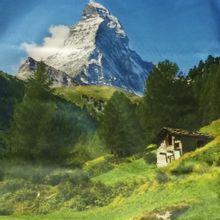 paneel bergen