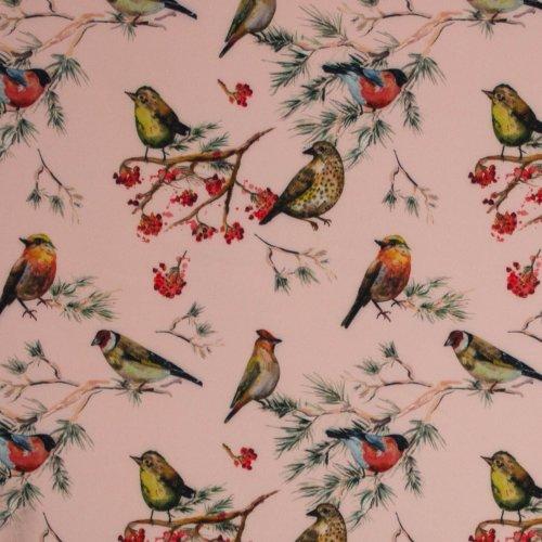 Softshell in roze met vogeltjes