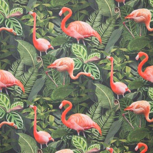 canvas Flamingo