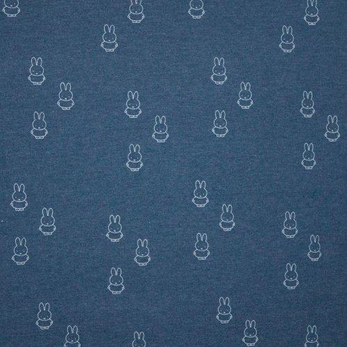 Blauwe tricot met nijntje